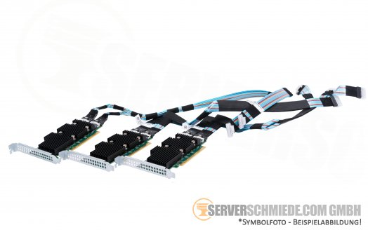 Dell NVMe U.2 PCIe x16 Controller Extender Expansion 12x U.2 Kit incl. cables for R640 R740xd R940
